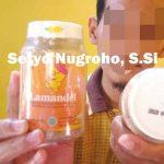Lamandel Obat Herbal Amandel dan Radang Kemasan Botol