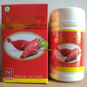 ALYCHINS Kapsul Bawang Dayak Original Asli