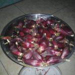 bawang dayak merah super