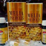 Propolis Melia MSS Original Tentunya